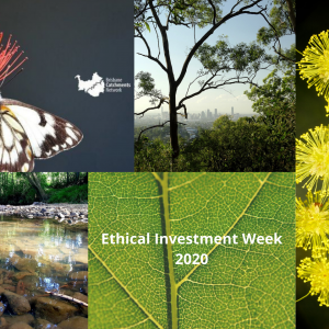 Ethical Investment Week 2020 – Tree Planting Day