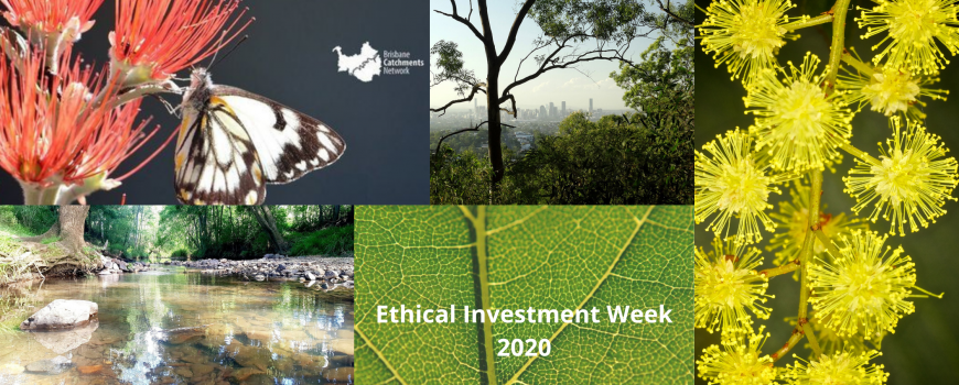 Ethical Investment Week 2020
