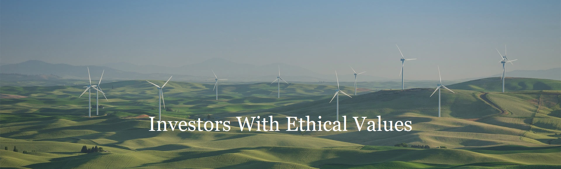 Ethical_investment_investorsethicalvalues